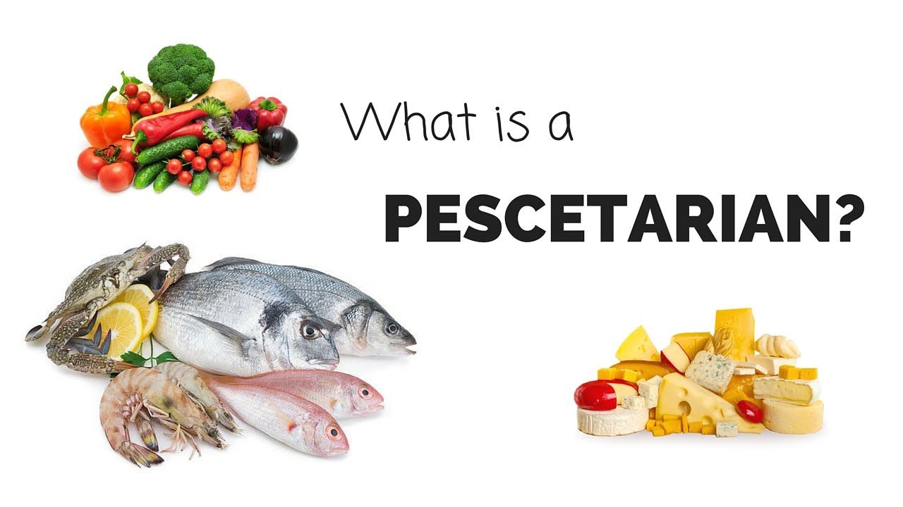 What is a PESCETARIAN  YouTube