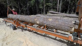 The Longest Pine Logs I've Ever Milled!
