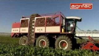 Agrifac sugar beet harvester Big Six