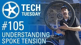 Understanding Spoke Tension: LIVE at Sea Otter 2018 - Tech Tuesday #105