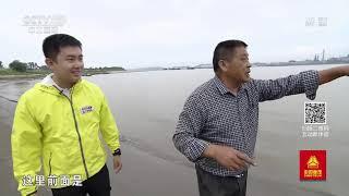 《远方的家》 20191113 长江行(69) 秋水长天 美在宿松  CCTV中文国际