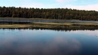 Нахимовское озеро п. Овсяное Малиновка.