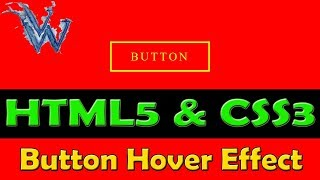 Button hover effect css animation | Learn html and css | By Amazing Techno Tutorials
