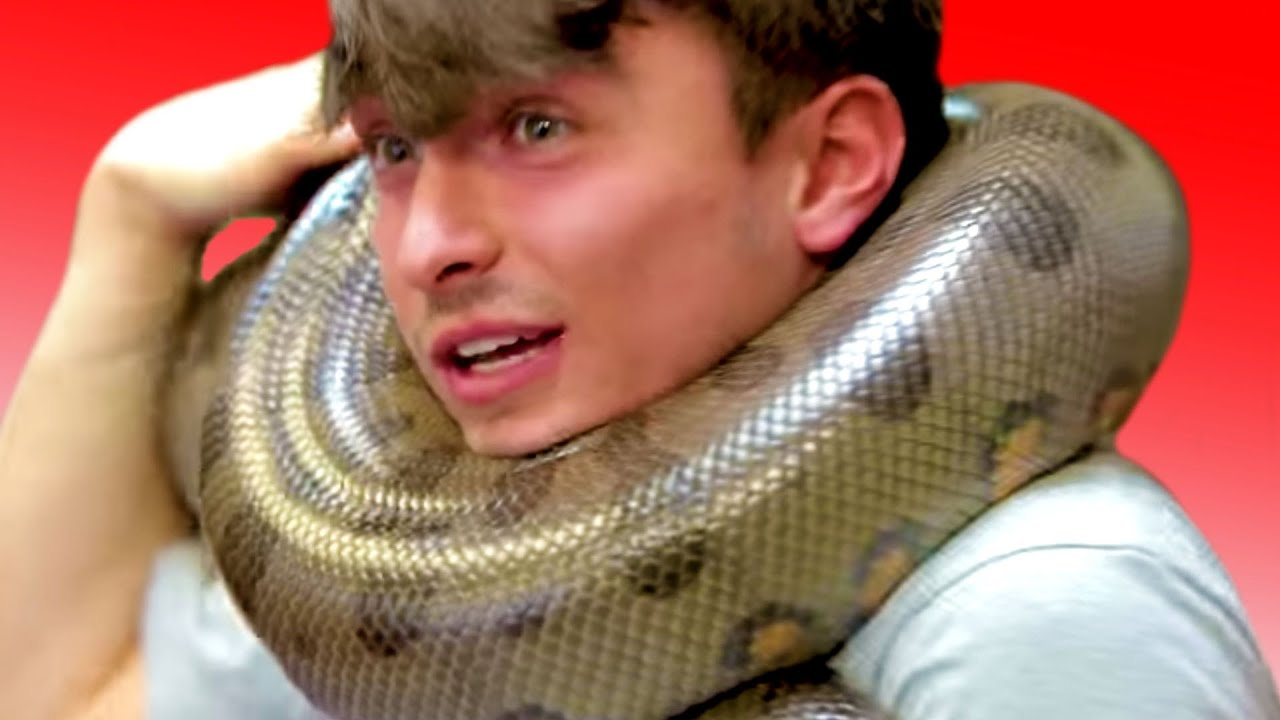 NOAH CHOKED BY MY GIANT ANACONDA!! UNBOXING 120 SNAKES!! | BRIAN BARCZYK