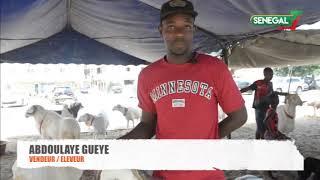 Tabaski 2018 : Les éleveurs avertissent au point de vente sud foire