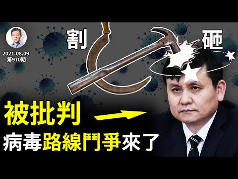 张文宏「与病毒共存」被批判!路线斗争来了,人祸还远吗?「砸」与「割」:工具决定思维(文昭谈古论今20210809第970期)