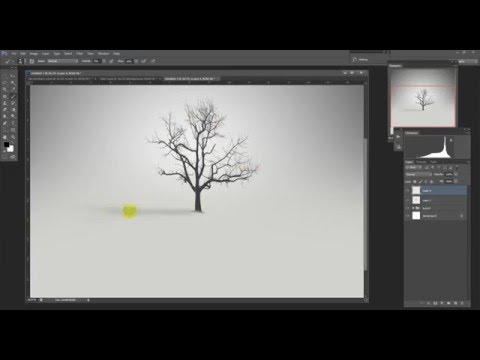 photography tutorial   - the tree - fine art using photoshop CS6