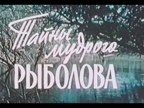 Yutube Ru Online Tube