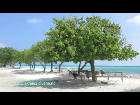 Ektemaldivene.com in Gulhi, Maldives
