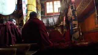 Monks reciting dharma at Samding monastery