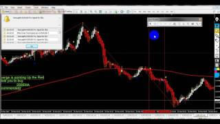 Strategy Scalping NVTForex - Scalping  1 min with  200 EMA