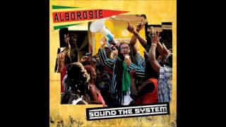 Alborosie - Rock The Dancehall - Sound The System 2013