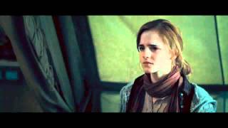 The Ballad of Ron Weasley and Hermione Granger