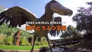 神戸どうぶつ王国2016CM.