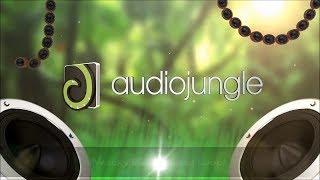 Music - In Future Pop   AudioJungle Download