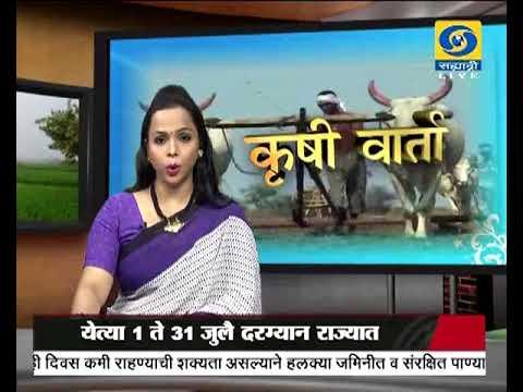 Krishivarta Bajarbhav - 13 June 2018 - कृषीवार्ता बाजारभाव