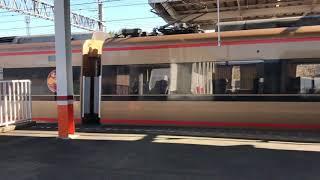 東武鉄道100系スペーシア(日光詣)板倉東洋大前駅通過