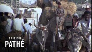 Pakistan - Market Town (1970-1975)