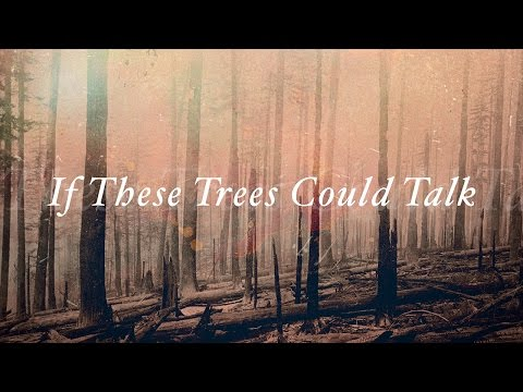 """If These Trees Could Talk """"They Speak with Knives"""" (OFFICIAL)"""
