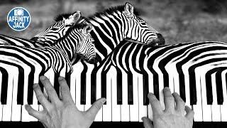 Affinity Photo - Manipulation - Klavier Zebra (English Subtitles)