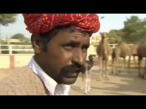 The Thar Desert   Deserts and Life