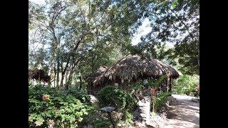 A day visiting Yucatan, Mexico & Maya Culture