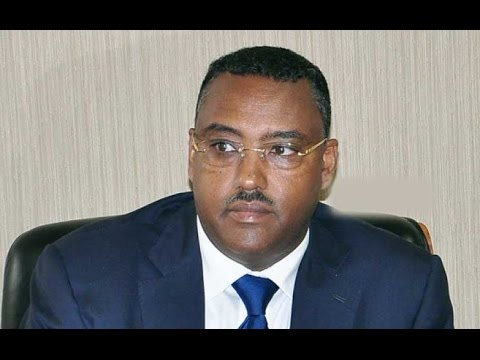 Live interview with His Excellency Deputy Prime Minister Demeke Mekonen