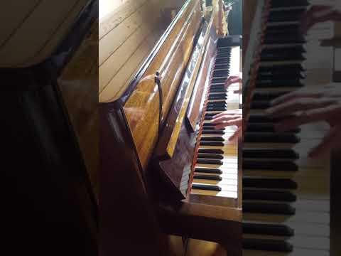 Заказать пианиста на свадьбу