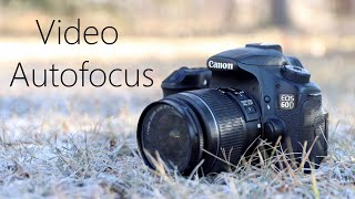 Dealing With Canon 60D's V…