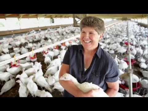 Plainville Farms: Growing turkeys is a partnership.
