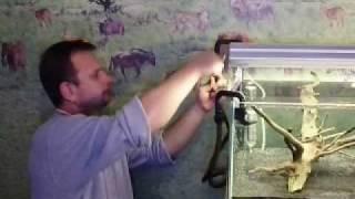 видео Установка внешнего аквариумного фильтра – ASTRO 2210