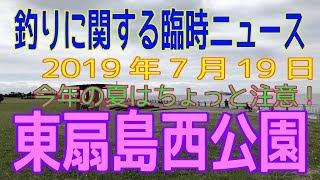 深神高広の釣りに関する臨時ニュース&注意(東扇島西公園)2019/7/19