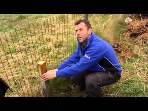 Pose d'écrans de jardin (en bois) - Vidéo bricolage ...