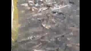 видео: Река Барабашевка 2013 10 11