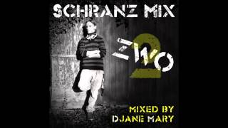 Schranz Mix 2 [30Min] mixed by Mary (HQ)