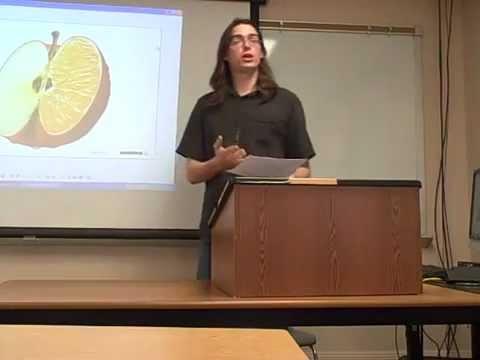Persuasive speech against genetically enginered food