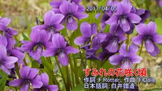 すみれの花咲く頃(cover)