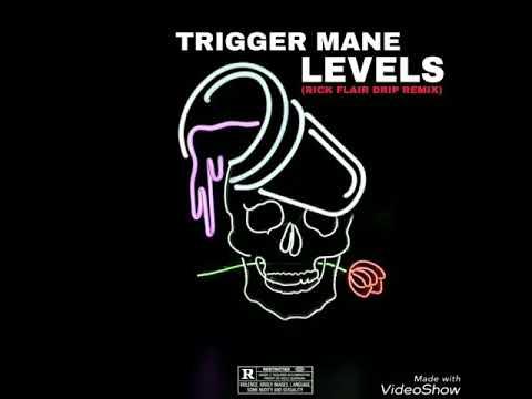 "Trigger Mane ""Levels"" (rick flair drip remix)"