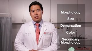Approach to the Dermatology Exam (Stanford Medicine 25)