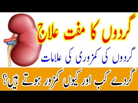 2-effective-home-remedies-for-kidney-pain-in-urdu/hindi