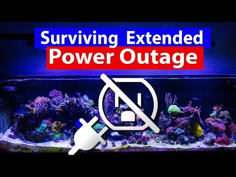 Saltwater Aquarium - Surviving extended power outage from storms, floods, hurricanes and powerless.