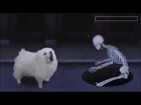 Собачка скелет 10 часов...