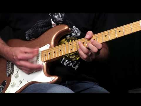 Fender Custom Shop 2017 Collection Postmodern Stratocaster Lush Closet Classic  •  SN: XN1408