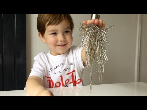 Amazing Experiment For Kids With A Magnet And Paper Clips