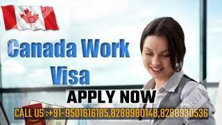 CANADA STUDY/ TOURIST/WORK