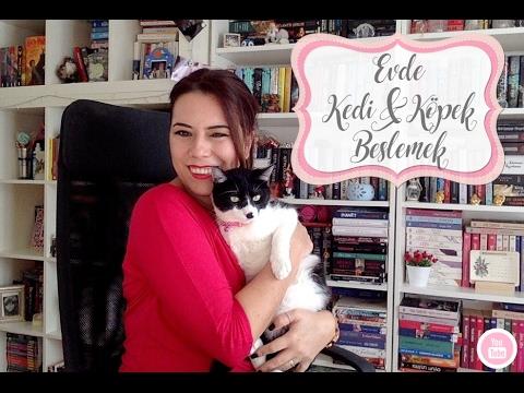 Evde Kedi Ve Köpek Beslemek | Neler Yaşadım?