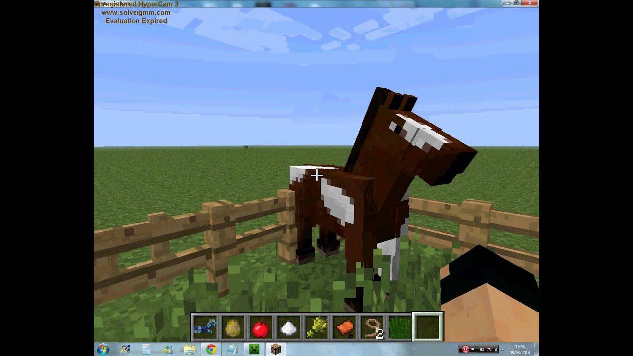 Come cavalcare un cavallo in Minecraft   Salvatore Aranzulla