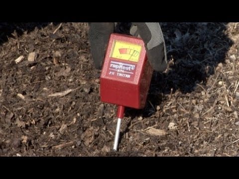 How To Test Garden pH Levels For Ideal Conditions