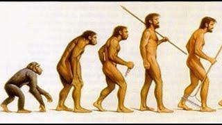 Timpul pentru cunoastere - Evolutia omului (Verticalizare Curiozitati)