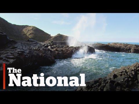 Wave Energy Industry Growing